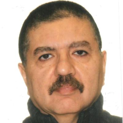 Abdulmajeed N